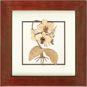 Orchid Frame-02